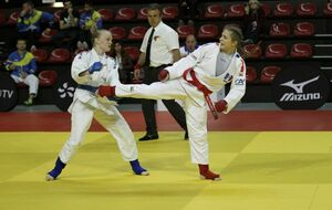 5f4a8c56baf23_PHOTOFIGHTINGJUJITSU.jpg